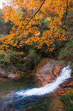 Waterfall in autumn forest Royalty Free Stock Photography