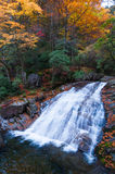 Waterfall in autumn forest Stock Images