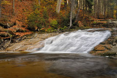 Waterfall in autumn forrest Stock Images