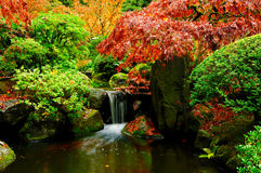Waterfall in autumn horizontal closeup Royalty Free Stock Images
