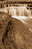 Waterfall and Autumn leaves Royalty Free Stock Photos