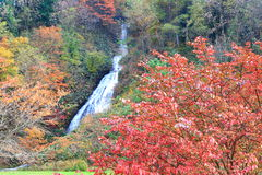 Waterfall in autumn Royalty Free Stock Photography
