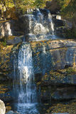 Waterfall in autumn park. Covered with golden leaves vertical scene Royalty Free Stock Image