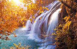 Waterfall in Autumn. Picturesque tranquil waterfall scenery in the middle of an autumn forest royalty free stock photo