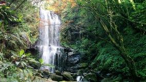 Waterfall in autumn season, Taiwan stock footage