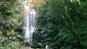 Waterfall in autumn season, Taiwan stock video footage