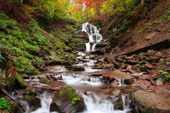 Waterfall autumn Shipot. Beautiful view of the waterfall in the beech forest in the golden autumn season Stock Photos