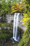 Waterfall in Autumn. Tews Falls in full autumn colours Stock Image