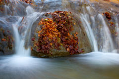 Waterfall in autumn time Royalty Free Stock Photo