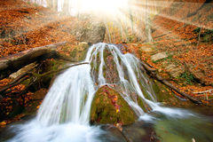 Waterfall in auumn forest Royalty Free Stock Image