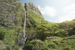 Waterfall. On the azores islands royalty free stock images