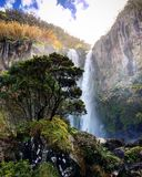 Waterfall in Azores royalty free stock images