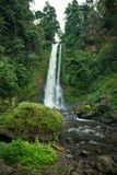 Waterfall in Bali jungle Stock Images