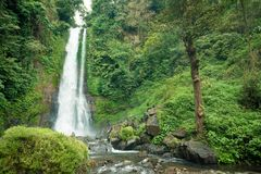Waterfall in Bali jungle Stock Image