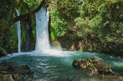 Waterfall in the Banias Nature Reserve Stock Photos
