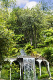 Waterfall in a Beautiful Garden at Monte above Funchal Madeira. This wonderful garden is at the top of the cablecar from the seafront in Funchal. It is filled Royalty Free Stock Photography