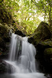 Waterfall. A beautiful huge waterfall in the forest Royalty Free Stock Image