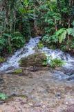 Waterfall beautiful in southeast asia. Stock Photo