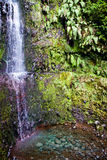 Waterfall. A beautiful tropical waterfall in the forest Stock Photography