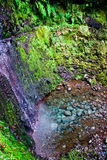 Waterfall. A beautiful tropical waterfall in the forest Royalty Free Stock Photo