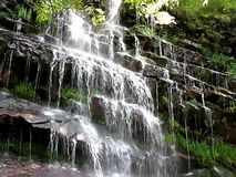 Waterfall. Beautiful view of waterfall cascade , moutain river, Old mountain Stara planina southeast Serbia, Only video stock video