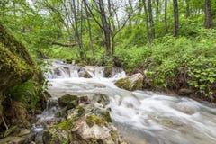 Waterfall. Beautifull waterfall in Mehedinti Mountains Royalty Free Stock Photo