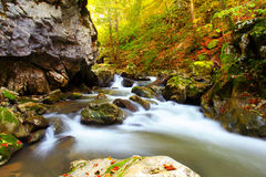 Waterfall in beech forest. On autumn Stock Photography