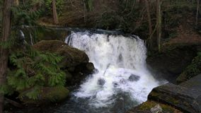 Waterfall. In a Bellingham Washington park stock image