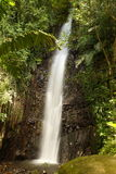 Waterfall on Bequia Island Royalty Free Stock Photography