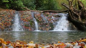 Waterfall of Bezumenka River, Sochi, Russia stock video footage