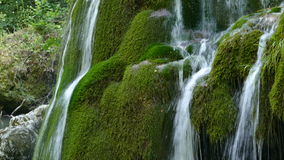 Waterfall Bigar, Romania 3 stock video footage