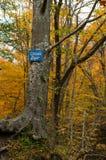 Waterfall Bigar sign Stock Photography