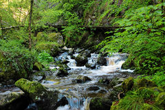 Waterfall in the Black Forest in Germany. Beautiful nature with waterfall in the Black Forest in Germany stock image