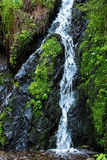 Waterfall in the Black Forest in Germany. Beautiful nature with waterfall in the Black Forest in Germany royalty free stock image
