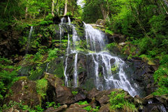 Waterfall in the Black Forest in Germany. Beautiful nature with waterfall in the Black Forest in Germany royalty free stock photos