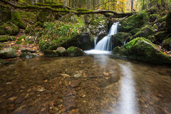 Waterfall in black forest, Germany Royalty Free Stock Photography