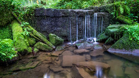 Waterfall in the Black Forest. Nature photo on a warm summer day in the depth of the forest stock photography