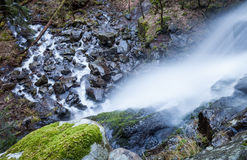 Waterfall in black forest Royalty Free Stock Photo