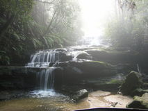 Waterfall in the Blue Mountains. A mist-shrouded waterfall in the rainforests of the Blue Mountains, Australia Stock Photo