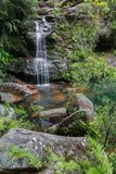 Waterfall. In the Blue Mountains, NSW, Australia royalty free stock photos
