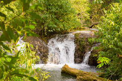 Waterfall in Bonito Royalty Free Stock Photos