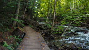 Waterfall Bordwalk In Algonquin Provincial Park Forest Hiking Trail. Waterfall In Algonquin Provincial Park Forest Hiking Trail Royalty Free Stock Photo