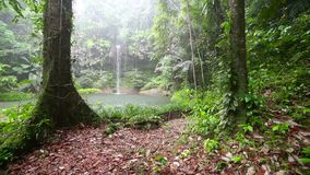 Waterfall at borneo rainforest in rainy day Stock Photography