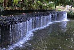 Waterfall in Botanic Gardens. Singapore July 2016 - Waterfall feature in the Singapore Botanic Gardens royalty free stock photography