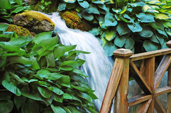 Waterfall in botanical garden Stock Photography