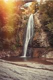 Waterfall in botanical gardens. Royalty Free Stock Image