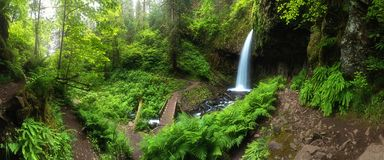 A waterfall with a bridge in deep forest cascades is located in the Columbia River Gorge in Oregon Beautiful waterfall background. royalty free stock photos
