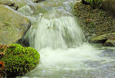 Waterfall on a brook Royalty Free Stock Image