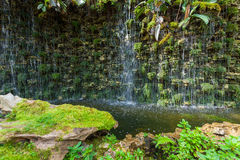 Waterfall in butterfly garden, Thailand Stock Image