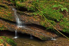 Waterfall Butzerbachtal during fall in the Eifel Royalty Free Stock Photography